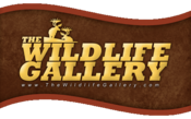 Wildlife Gallery Logo